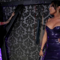 Arabelle Raphael in 'Kink TS' Jessica Fox and Arabelle Raphael: Substitute Submissive (Thumbnail 1)