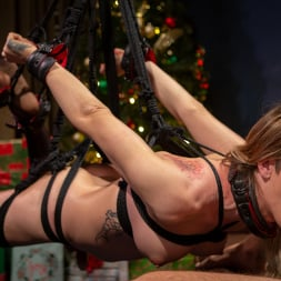 Casey Kisses in 'Kink TS' Best Christmas Ever: Gorgeous Casey Kisses Submits To Dante Colle (Thumbnail 11)
