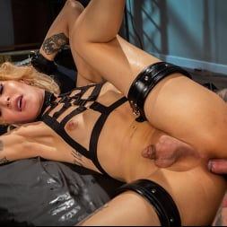 H3ll4SL00tz in 'Kink TS' Submissive A.I. - Sexy Ryder Monroe is Punished by Cynical Scientist (Thumbnail 14)
