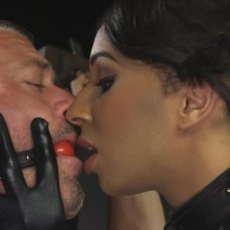 Honey FoXXX in 'Kink TS' First Time Cream Pie (Thumbnail 1)