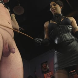 Honey FoXXX in 'Kink TS' First Time Cream Pie (Thumbnail 4)
