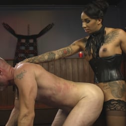 Honey FoXXX in 'Kink TS' First Time Cream Pie (Thumbnail 17)
