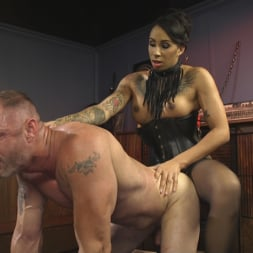 Honey FoXXX in 'Kink TS' First Time Cream Pie (Thumbnail 23)