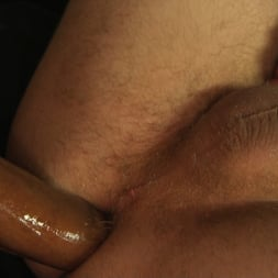 Honey FoXXX in 'Kink TS' TS Honey FoXXX Delivers Big Tits and a Huge Cock All Night Long! (Thumbnail 9)