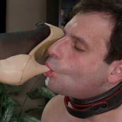 Jessica Fox in 'Kink TS' A Morning With Jessica Fox: Slave Marcelo Serves A Goddess (Thumbnail 1)