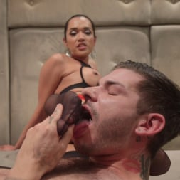 Jessica Fox in 'Kink TS' Her delicious cock is your remedy! (Thumbnail 8)