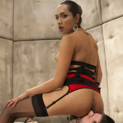 Jessica Fox in 'Kink TS' Her delicious cock is your remedy! (Thumbnail 11)