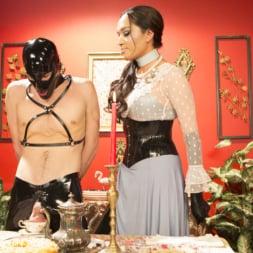 Jessica Fox in 'Kink TS' Kinky Tea Party with Jessica Fox (Thumbnail 3)
