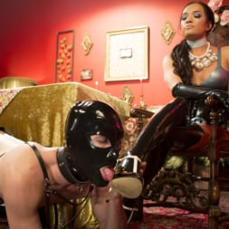 Jessica Fox in 'Kink TS' Kinky Tea Party with Jessica Fox (Thumbnail 5)