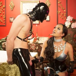 Jessica Fox in 'Kink TS' Kinky Tea Party with Jessica Fox (Thumbnail 7)