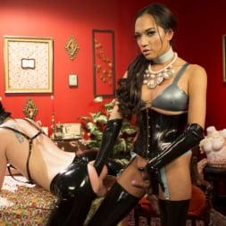 Jessica Fox in 'Kink TS' Kinky Tea Party with Jessica Fox (Thumbnail 12)