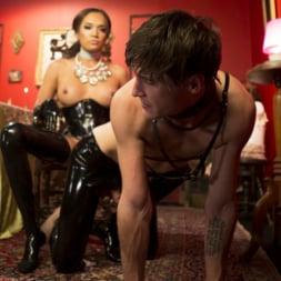 Jessica Fox in 'Kink TS' Kinky Tea Party with Jessica Fox (Thumbnail 28)