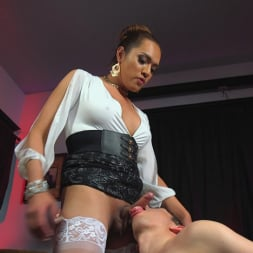Jessica Fox in 'Kink TS' Out Foxed, Flogged, And Fucked (Thumbnail 10)