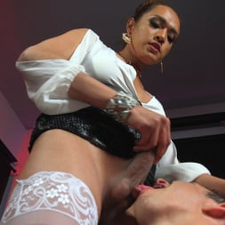 Jessica Fox in 'Kink TS' Out Foxed, Flogged, And Fucked (Thumbnail 11)
