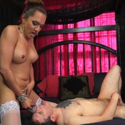 Jessica Fox in 'Kink TS' Out Foxed, Flogged, And Fucked (Thumbnail 24)