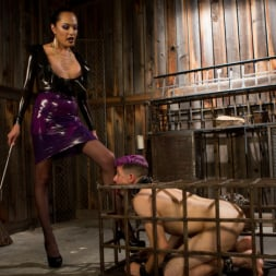 Jessica Fox in 'Kink TS' Out Foxed 2: Big Boss Becomes Dungeon Anal Whore (Thumbnail 3)