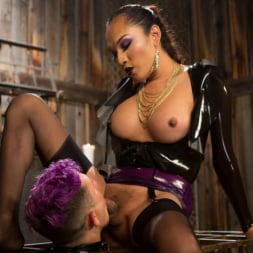 Jessica Fox in 'Kink TS' Out Foxed 2: Big Boss Becomes Dungeon Anal Whore (Thumbnail 6)