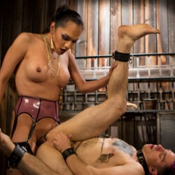 Jessica Fox in 'Kink TS' Out Foxed 2: Big Boss Becomes Dungeon Anal Whore (Thumbnail 13)