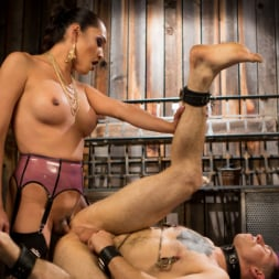 Jessica Fox in 'Kink TS' Out Foxed 2: Big Boss Becomes Dungeon Anal Whore (Thumbnail 14)