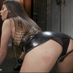 Kacie Castle in 'Kink TS' Mistress Kisses: Casey Kisses Kinky Sex with Kacie Castle (Thumbnail 4)
