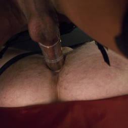 Kayla Biggs in 'Kink TS' wakes from Her Vampire Sleep Cock, Ass and Cum Hungry! (Thumbnail 7)