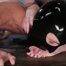 Kendall Penny in 'Kink TS' Anal Instinct: Kendall Penny and Tony Orlando (Thumbnail 13)