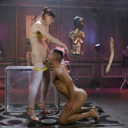 Natalie Mars in 'Kink TS' Cuckolds the World: TS Star pounds slave, delivers JOI (Thumbnail 8)