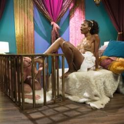 Natassia Dreams in 'Kink TS' I Dream Of Natassia (Thumbnail 1)