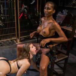 Natassia Dreams in 'Kink TS' Natassia Dreams' Slutty Leather Sex Kitten, Ella Nova (Thumbnail 5)
