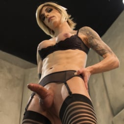 Nina Lawless in 'Kink TS' and her HUGE, HUNGRY, HARD cock make an EXPLOSIVE debut! (Thumbnail 11)