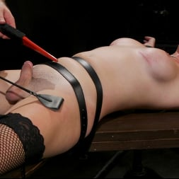 Pierce Paris in 'Kink TS' Southern Sass: Kendall Penny Submits for the First Time! (Thumbnail 7)