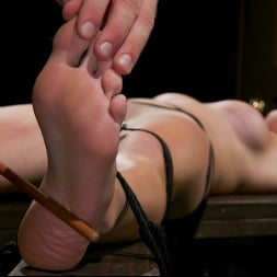 Pierce Paris in 'Kink TS' Southern Sass: Kendall Penny Submits for the First Time! (Thumbnail 8)