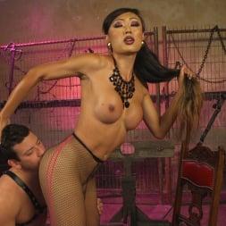 Reed Jameson in 'Kink TS' Goddess Venus Punishes Arrogant Boy Toy (Thumbnail 17)