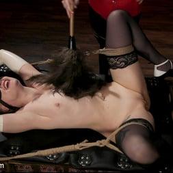 Roxxie Moth in 'Kink TS' The Filthy Maid: Roxxie Moth Disciplines Incompetent Arielle Aquinas (Thumbnail 4)