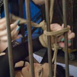 Stefani Special in 'Kink TS' Kinky Date -TS Stefani Special and Juliette March have hot Bondage Sex! (Thumbnail 1)
