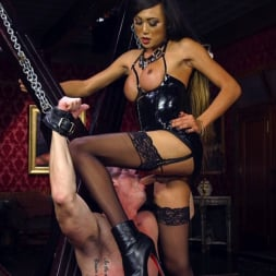 Venus Lux in 'Kink TS' Huge Fat Load Of TS Cum For A Politician (Thumbnail 4)