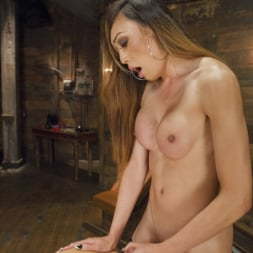 Venus Lux in 'Kink TS' Swinger Party Private room with Venus Lux and Jessica Taylor (Thumbnail 14)