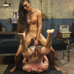 Venus Lux in 'Kink TS' Takes Down The Building Manager (Thumbnail 6)