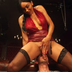 Yasmin Lee in 'Kink TS' The House Special: Yasmin Lee Treats Will Havoc To a Hard Surprise (Thumbnail 7)